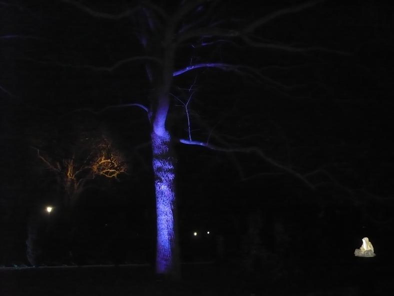 2017-01-29-15-winterleuchten-egapark