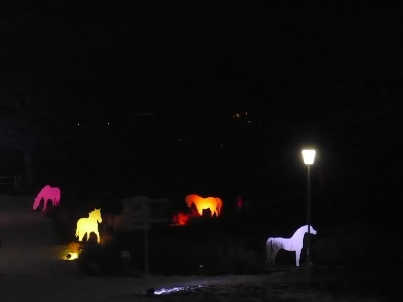 2017-01-29-19-winterleuchten-egapark