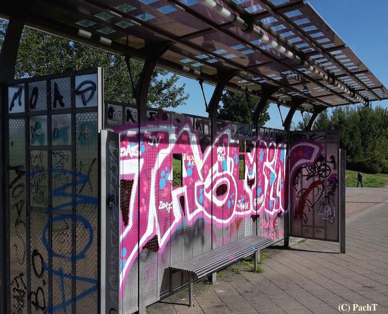 Graffiti_8 in Erfurt