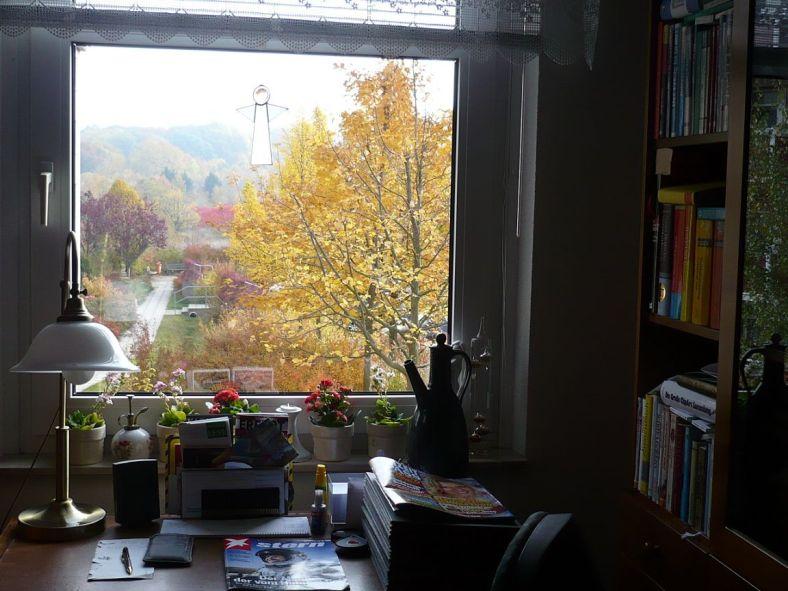 Herbst 2012 vom Arbeitsplatz gesehen 1
