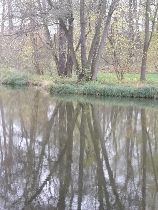 2017.11.07_03 Park und Schloss MOLSDORF Park