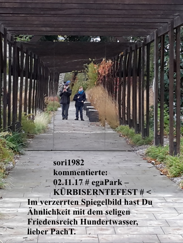 PachT alias F. Hundertwasser (Wien)