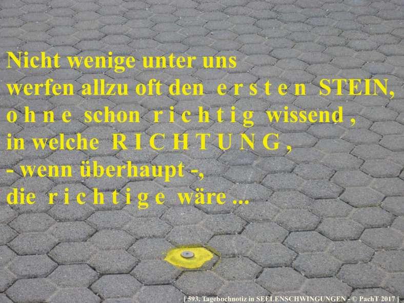 SSW593.Gedanke_Steinwerfer