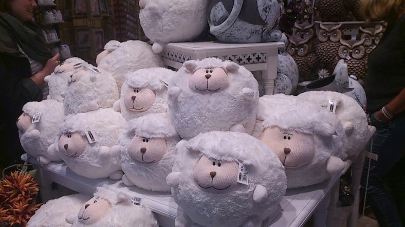Schafe SpZ