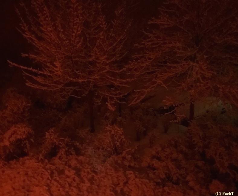 Schnee von heutel vorm Fenster 2018.01.21_06_36Uhr