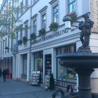 30.01.18 # SPAZIERGANGGEDANKEN in der Schillerstraße in WEIMAR #