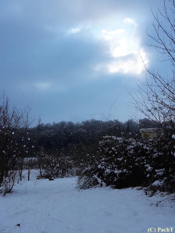 WinterSpaziergang 2018.01.21 Buchenberg