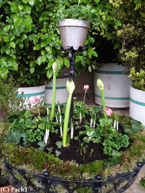 Weimar SchloßuPark Belvedere_14d Orangerie