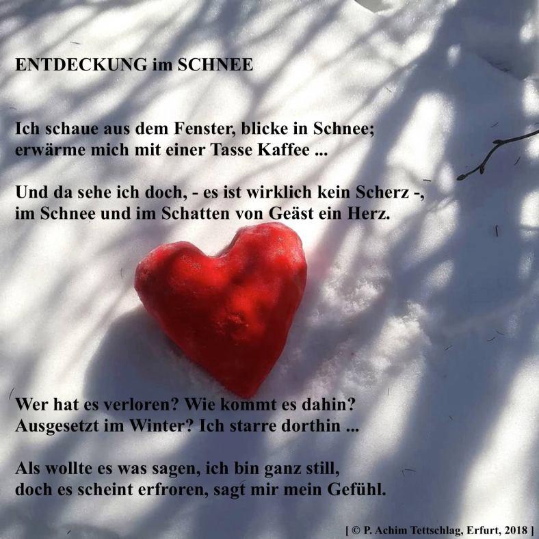 Gedicht Entdeckung im Schnee 2018
