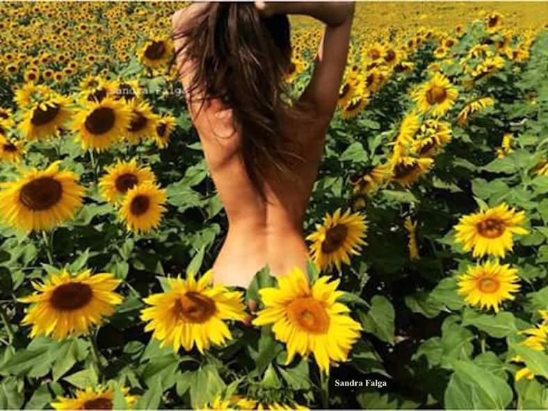 Sandra Falga _ Sonnebad in Sonnenblumen