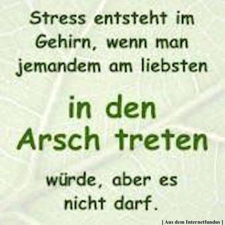 Zitat Stress