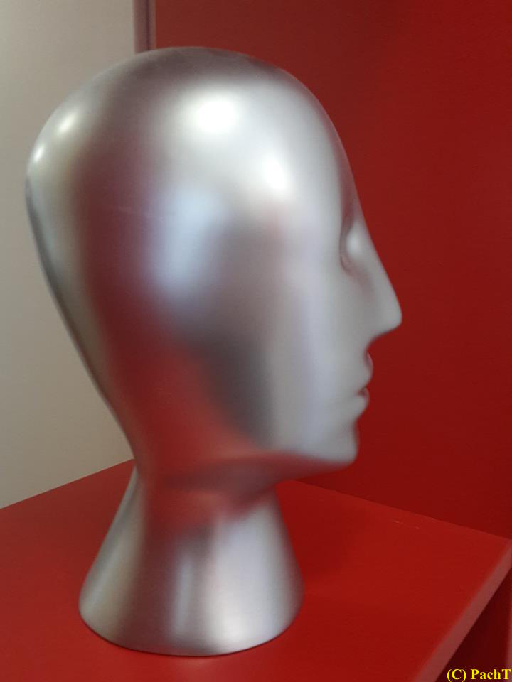 Kopf _ silbern im roten Regal