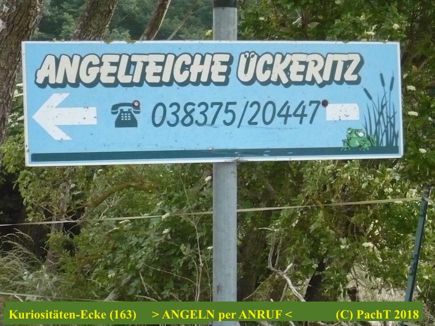 KURIOS 163 Angeln per Telefon