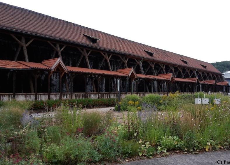 2018.08.21_03 Besuch in Bad Salzungen Gradierwerk
