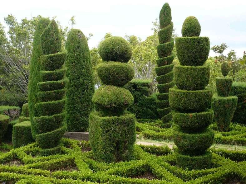 91 Botanischer Garten Funchal