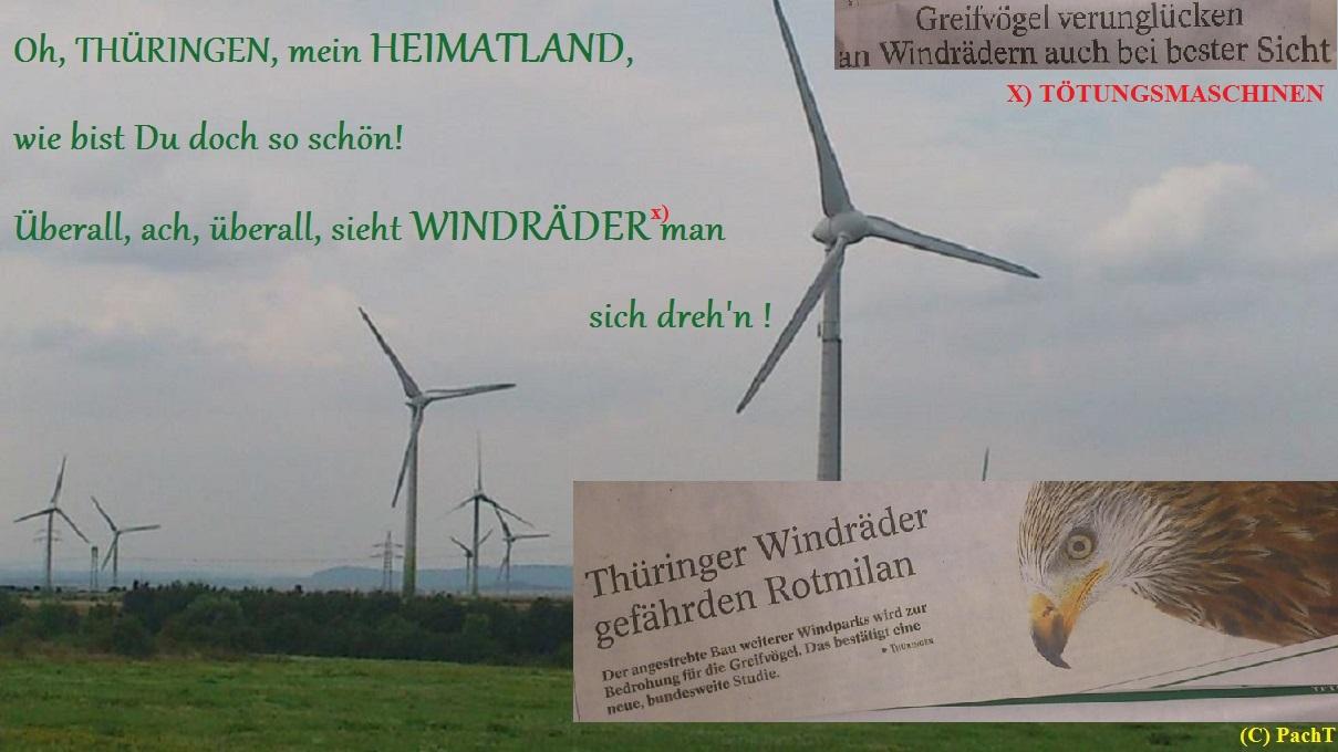 Windräder - Tötungsmaschinen