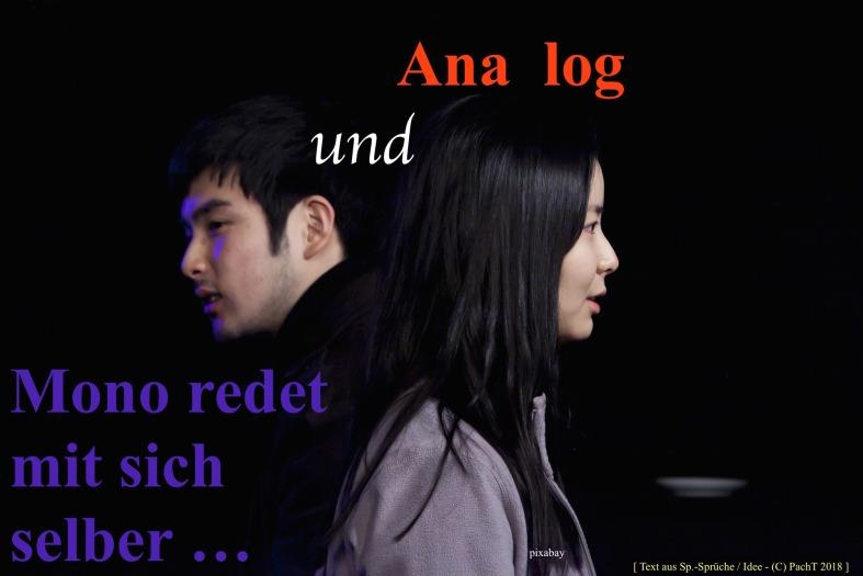 Zitat Ana Mono_log