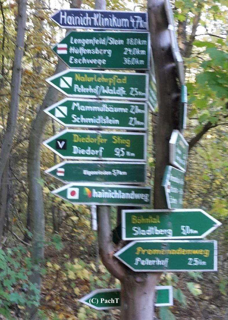 2018.10.13_14_WaldSpaziergang Rückblick