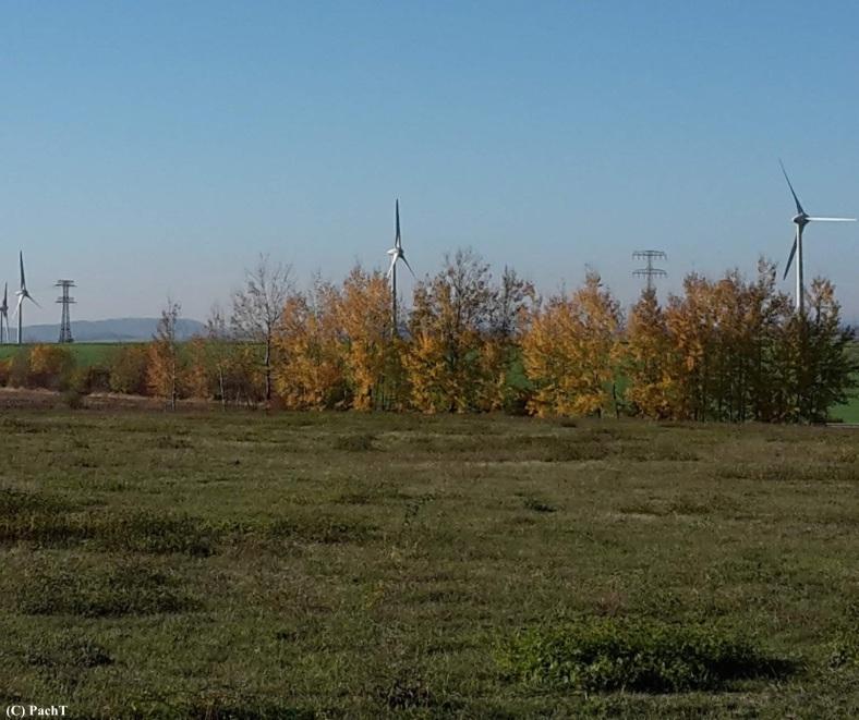 Herbst mit Windrädern 1
