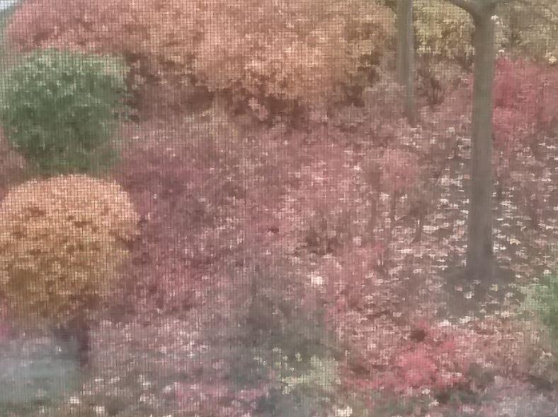 Herbst vergittert
