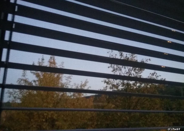 Herbst vorm Fenster