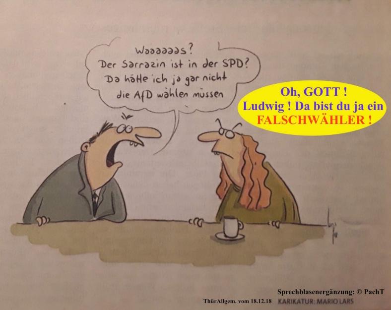 Karikatur Falschwähler