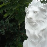 15.07.20 #Löwe - Bin ich das und seit wann ?