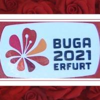 29.07.21 #BUGA 2021 - kein #FREIBRIEF geltendes #RECHT zu umgehen ...